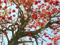 vysocina-milos-novotny-obrazy-krajina-fotografie-20
